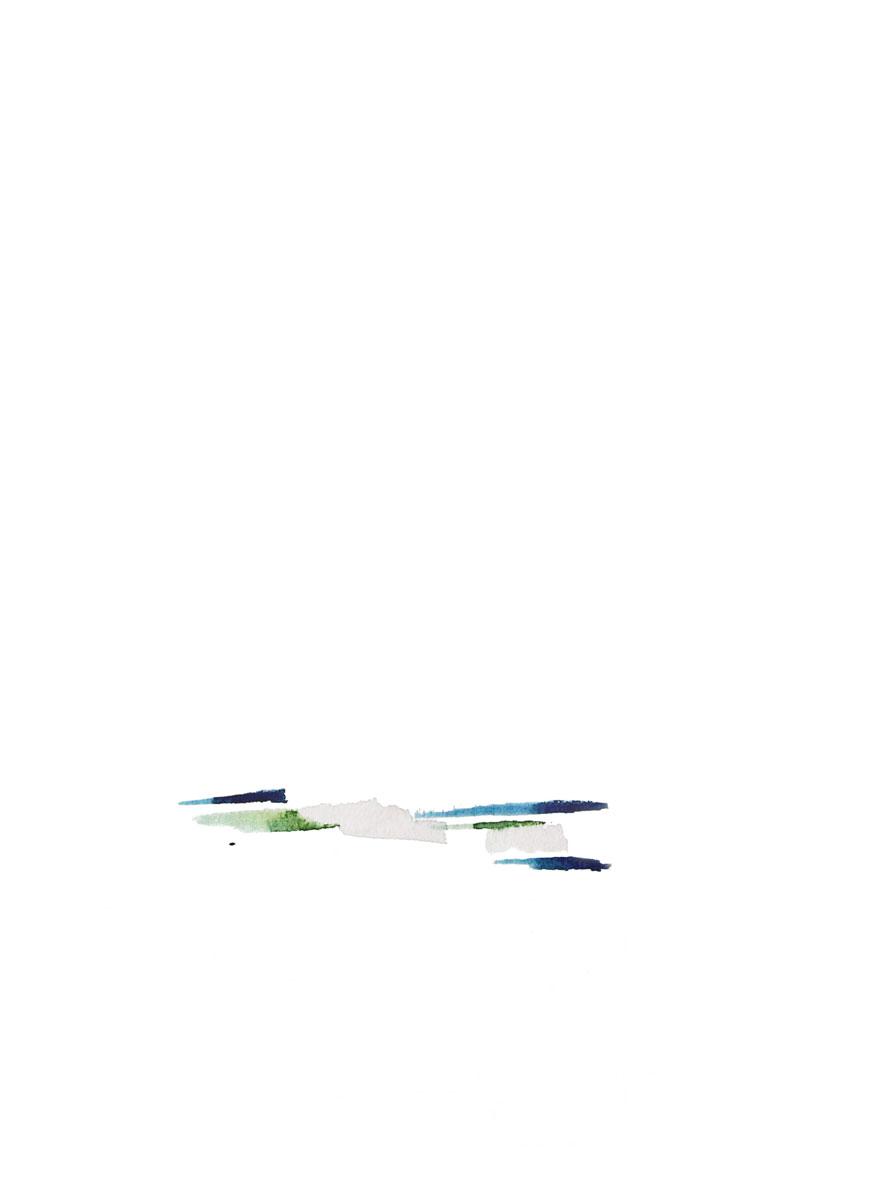Colour Fields II